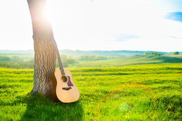 Acoustic guitar leaning against the trunk of a tree against a backdrop of beautiful scenery, a green meadow, spring hills, blue sky and sunset