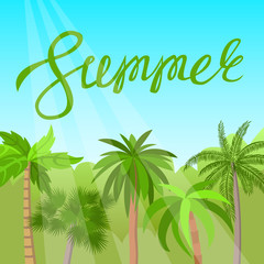 Palm grove. Summer banner. Lettering. Vector illustration.