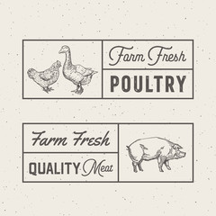 Farm Fresh Poultry and Meat Abstract Vector Signs, Symbols or Logo Templates. Hand Drawn Engraving Chicken, Goose and Pig Sillhouette with Frames and Retro Typography. Vintage Emblems Set.