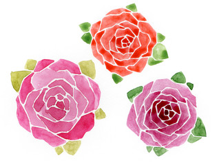 Flowers set of hand drawn watercolor roses and leaves.