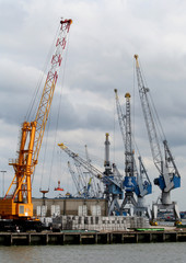 Cranes are working in the harbor of Rotterdam