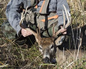 Wall Mural - Deer hunting in Iowa