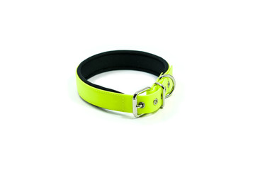 Pet supplies about rubber collar of green for pet on white background.