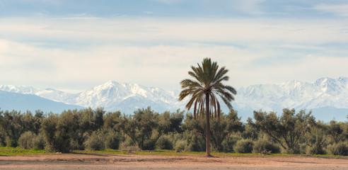 Constrating desert-mountain landscape. Marrakech, Morocco