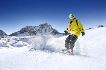 winter skier
