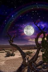 Desert Twilight Full Moon