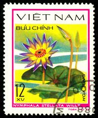 Ukraine - circa 2018: A postage stamp printed in Vietnam shows drawing flower Star lotus or Nymphaea stellata. Series: Aquatic flowers. Circa 1978.