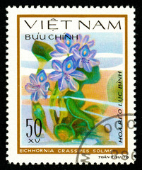Ukraine - circa 2018: A postage stamp printed in Vietnam shows drawing flower Water hyacinth or Eichhornia crassipes. Series: Aquatic flowers. Circa 1978.