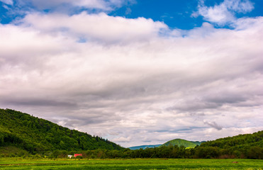 mountainous countryside landscape in springtime. grassy agricultural fields in the valley under the cloudy morning sky