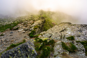 rocky cliffs of Fagaras mountains in fog. fantastic atmosphere of mysterious scenery of Romania Carpathians in summer. sun is shining behind the haze.