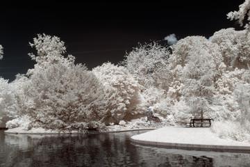 Parc à Copenhague en infrarouge