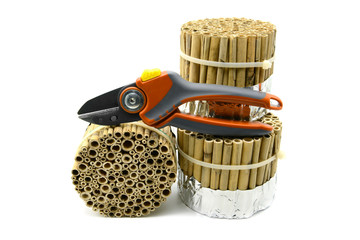 building an insect hotel with reed and bamboo sticks on white isolated background