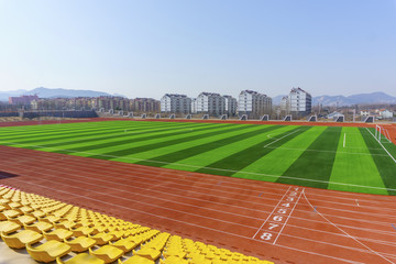 Football field green lawn