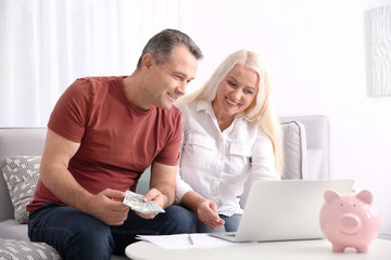 Mature couple managing family budget at home