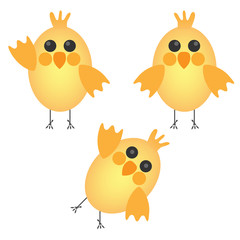 Set of cute chickens