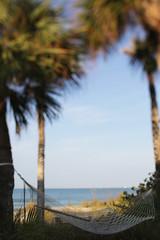 A Hammock Between Palm Trees At Sunrise