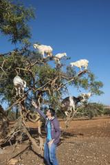 Junger Mann füttert Ziege am Arganbaum