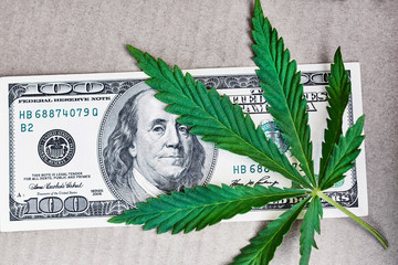 Cannabis leaf with money of one hundred US dollar photo high quality. The concept of marijuana drugs and business money