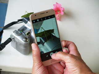 photograph on phone