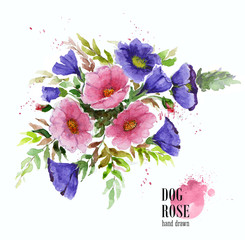 Flower composition. Bouquet of garden flowers. Watercolor illustration of dogrose branch and mallow flowers