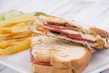 Pressed and toasted double panini with ham and cheese served on sandwich