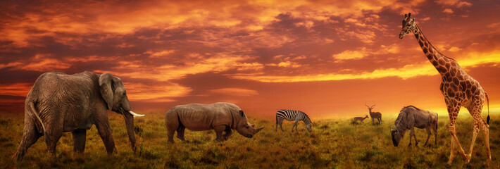 Poster de jardin Brique African sunset panoramic background with silhouette of animals