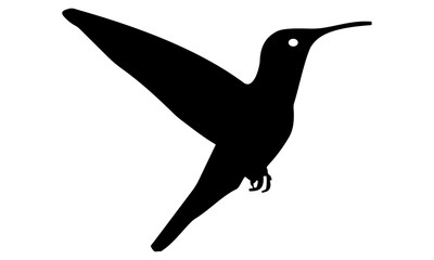 picture of the hummingbird silhouette