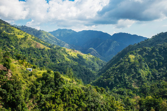 Blue mountains of Jamaica where coffee is grown
