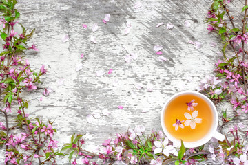 cup of tea and pink spring cherry blossoming on white rustic wooden table with petals