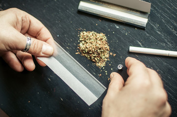 Preparing and rolling marijuana cannabis joint. Drugs narcotic concept