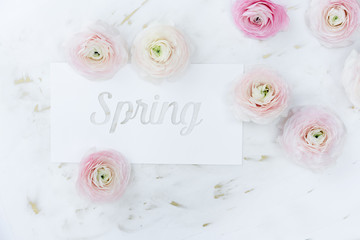 Spring message written on white cardboard, with random ranunculus around it