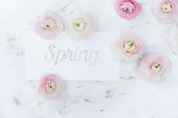 Spring message written on white cardboard, with random ranunculus around it