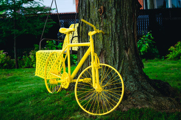 Yellow bicycle parked under the tree in the summer on a green lawn