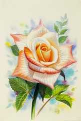 Watercolor painting  happy postcard colorful of rose.