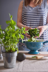 Woman washing spinach to make a smoothie drink.