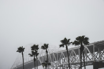 Foggy bridge with palm trees