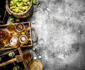 Beer background. Fresh beer with ingredients.