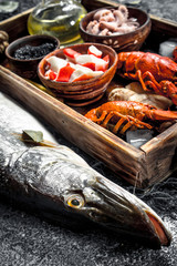 Wall Mural - Different seafood on a wooden tray.