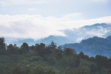 Beautiful mountains with clouds and fogs.