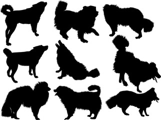 set of nine dogs silhouettes isolated on white