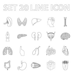Human organs outline icons in set collection for design. Anatomy and internal organs vector symbol stock web illustration.