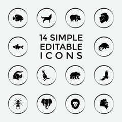 Set of 14 wild filled icons