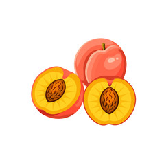 juicy peach whole and half  isolated on white background. Vector illustration. Healthy food design. ingredients for cooking.