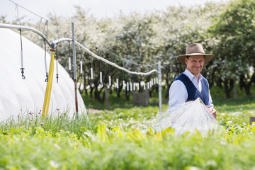 Farmer watering plants with hosepipe
