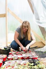 Woman in polytunnel tending to seedlings