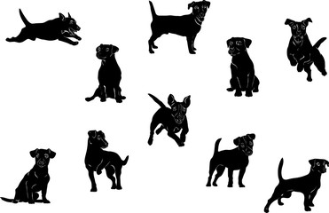 Jack Russell Terrier, dog, vector, black, silhouette, figure