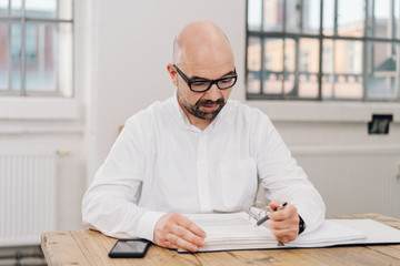 Portrait of a businessman checking documents