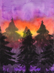 Watercolor illustration of spruce trees on sunset background.