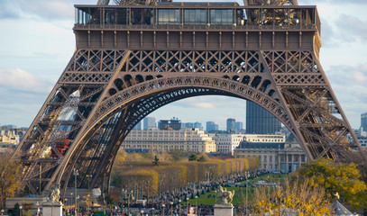 Fototapete - View of Eiffel Tower in Paris