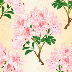 Seamless texture light pink rhododendron branch mountain shrub and rowanberry vintage vector illustration editable hand draw